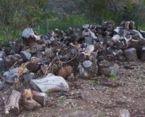 adelaide-barossa-mobile-log-splitting-services-for-firewood-02