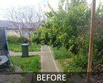 mobile-log-splitting-adelaide-to-barossa-yard-clean-up-before