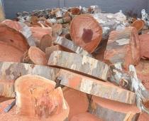 mobile-log-splitting-firewood-adelaide-barossa-02