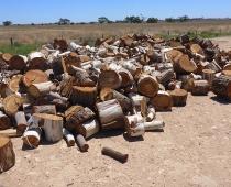 mobile-log-splitting-firewood-adelaide-barossa-07