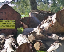 mobile-log-splitting-firewood-adelaide-barossa-12