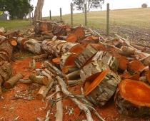mobile-log-splitting-firewood-adelaide-barossa-14